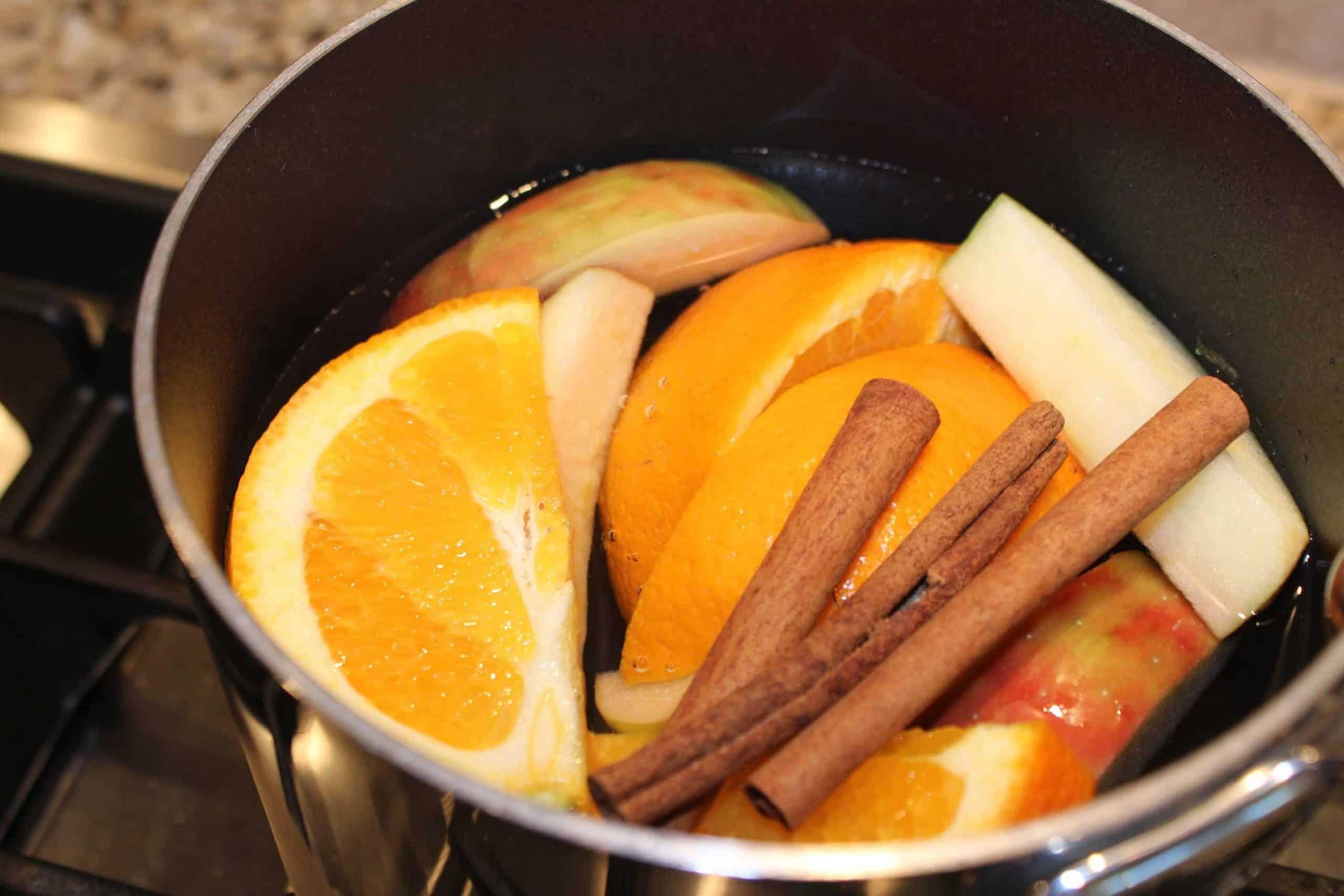 Homemade Holiday Kitchen Potpourri!