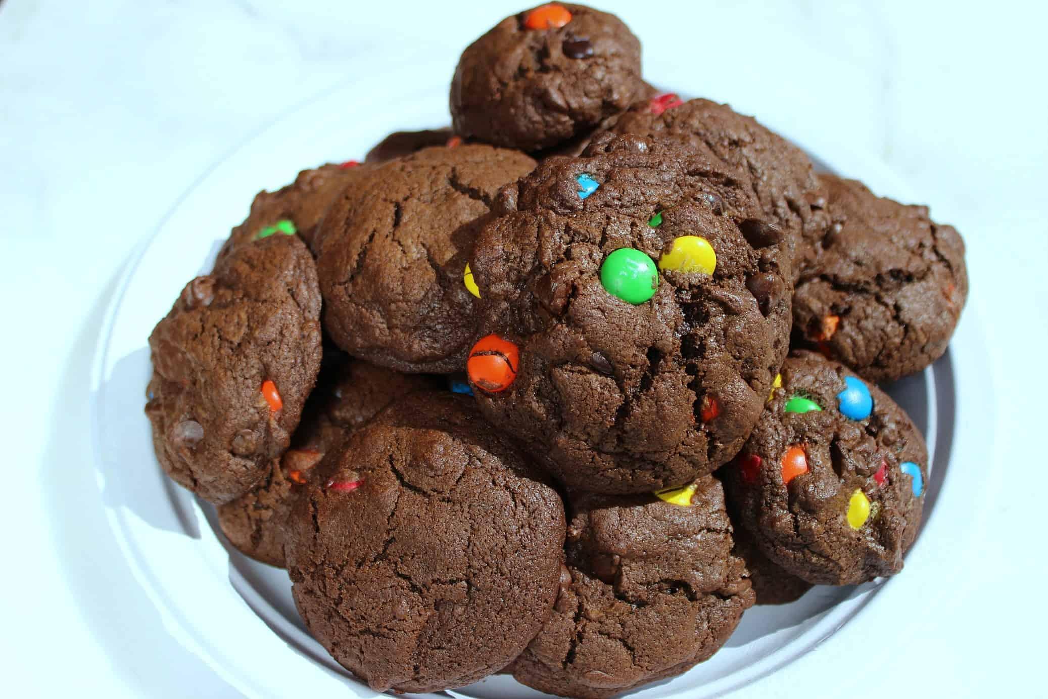 Chocolate Chocolate Chip Holiday Cookies!
