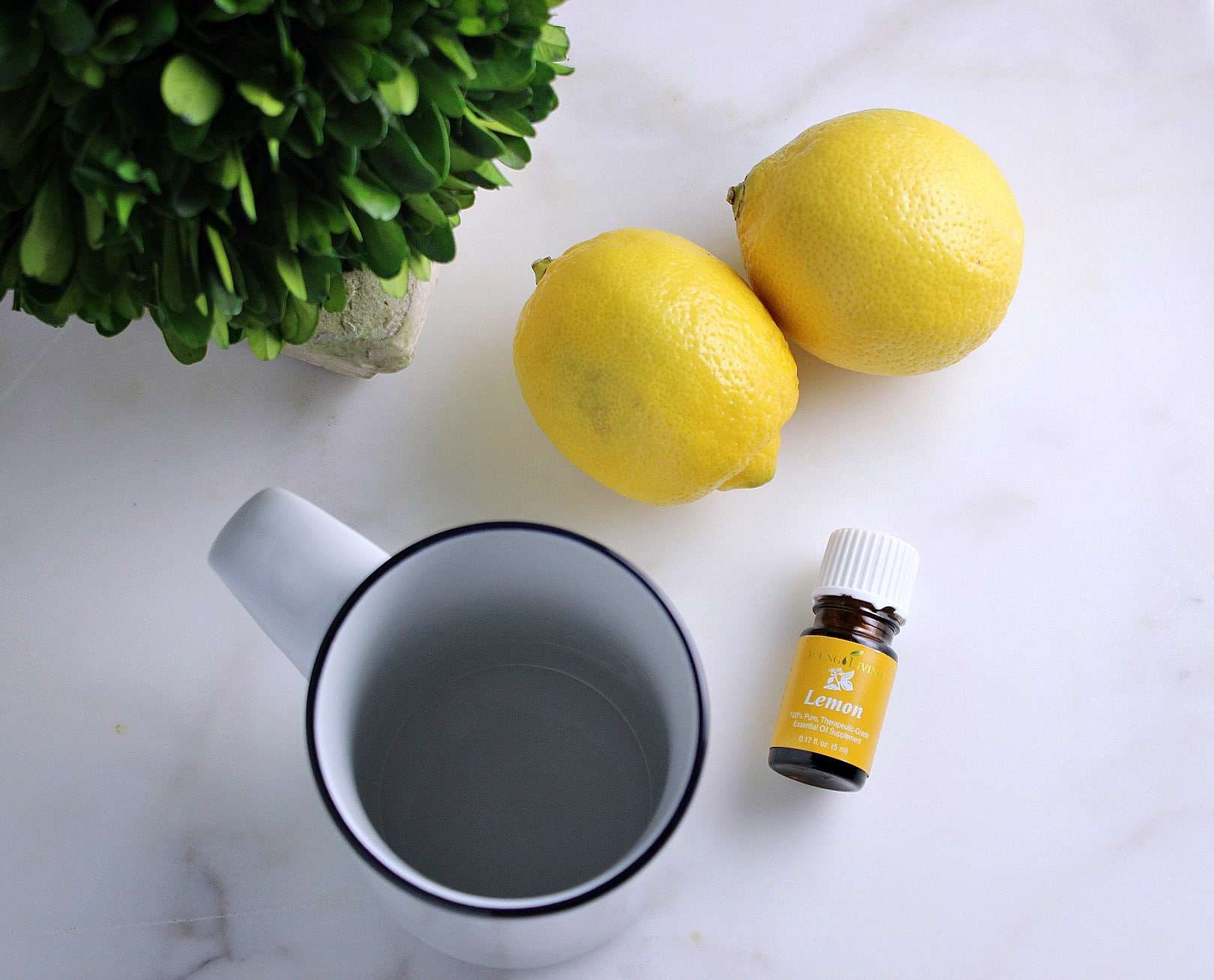 Why You Should Drink Water with Lemon!
