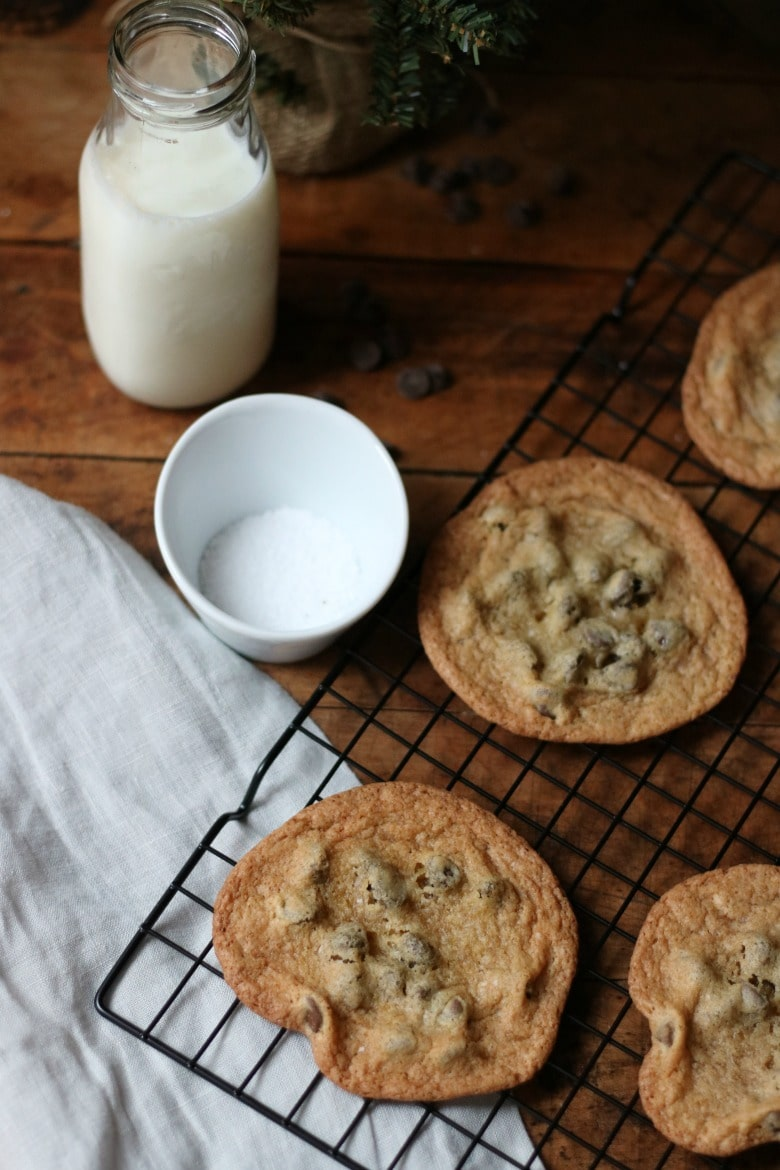 chocolate-chip-biscuits